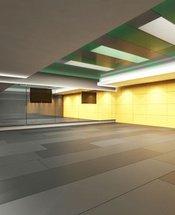 Fitness center Krystal Grand Suites Insurgentes Mexico City